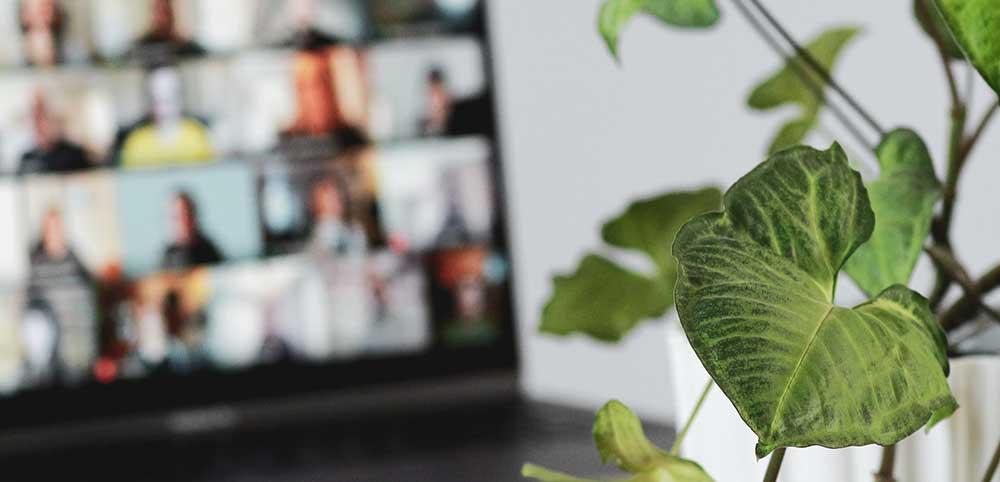 How to make your virtual meetings more rewarding